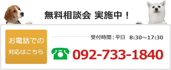 電話でのお問い合わせは092-733-1840
